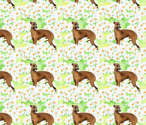 1258463_rr1258463_rrrseamless_italian_greyhound_and_daisies2jtp_shop_preview