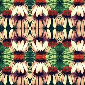 Cones of beauty