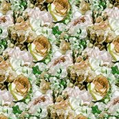 Rrlush_garden_-_cream_large_shop_thumb