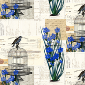 French Birdcage Blue Flowers