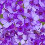 Rrrmini_blue_flowers_2inch_shop_thumb
