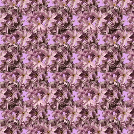 Rrhyacinth_flowers_3inch_copy_shop_preview