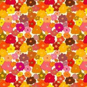 Rrcolorflowers_shop_thumb