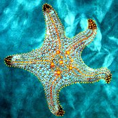 Rrrrrstarfish_for_spoonflower_shop_thumb