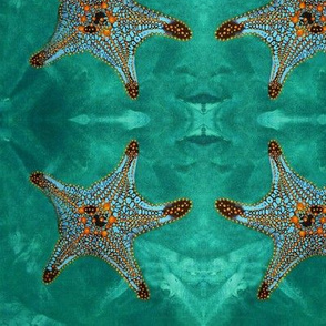 Starfish, lighter Background.