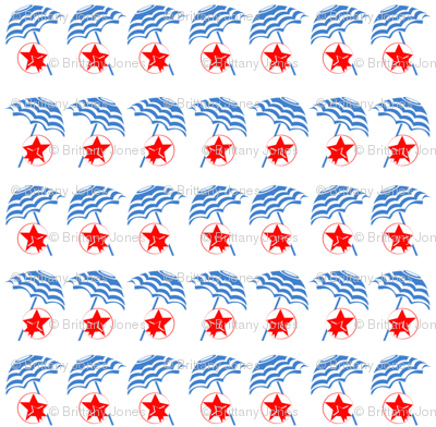 beach_stars_and_stripes