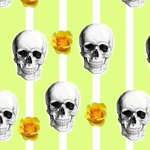 skullsstripesandroses