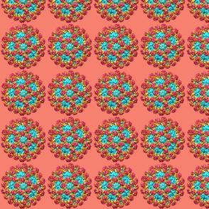 norovirus 2