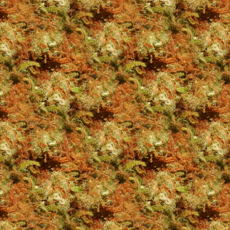 Kind Cush Chronic fabric by weedgarden on Spoonflower - custom fabric