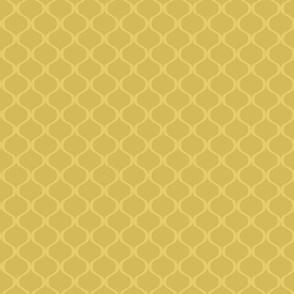 Papa's lattice