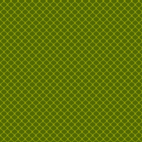 Papa's lattice (green)