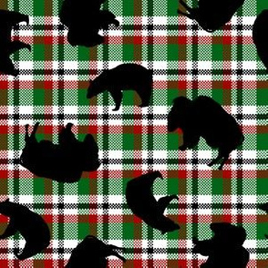Jumbled Black Bears and Buffaloes