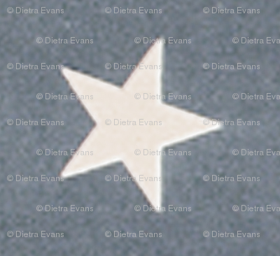 Vintage American Flag Stars