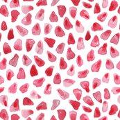 Rpomegranate_shop_thumb