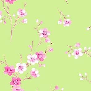 Blossom lime
