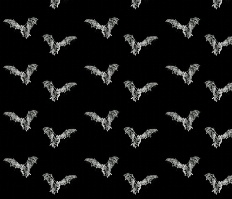 Jim's Bats! (Inverted, brighter) fabric by jenithea on Spoonflower - custom fabric
