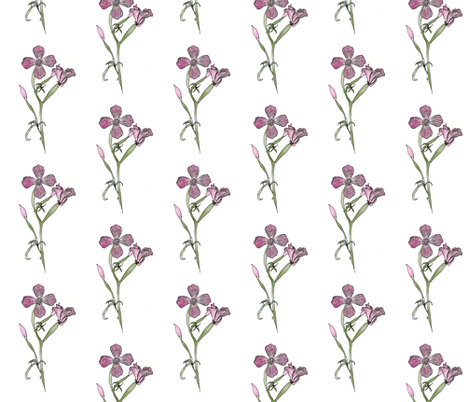 Farewell-to-spring-drawing200 fabric by mina on Spoonflower - custom fabric