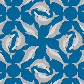 01270013 : dolphin array