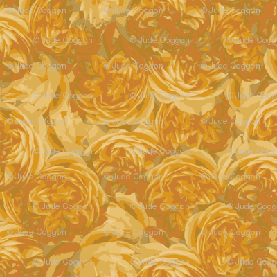 graham thomas yellow roses