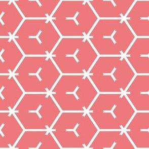 Honeycomb Motif 5