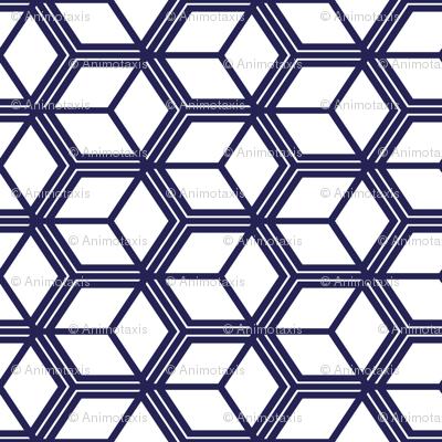 Honeycomb Motif 12