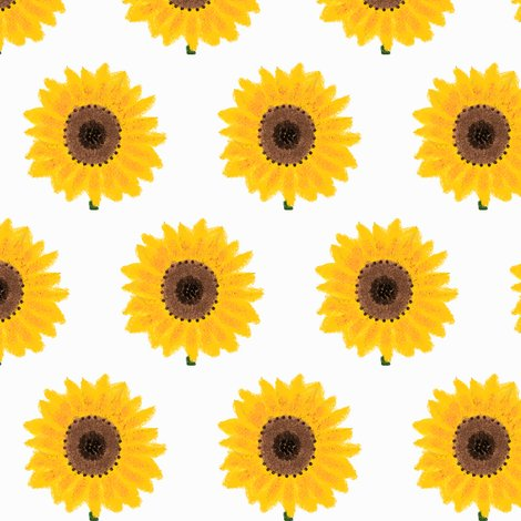 Rrrsunflower_shop_preview