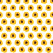 Rrrsunflower_shop_thumb