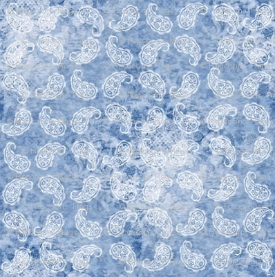 Shabby paisley (light blue)
