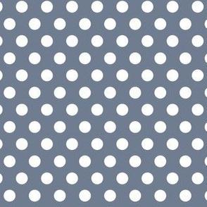 Polka Dots Blue Grey