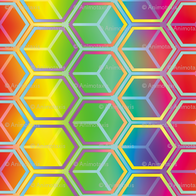 Honeycomb Rainbow 4