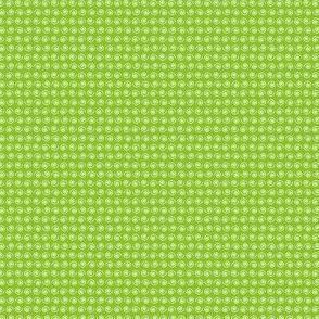 Snail on Fresh Leafy Green.