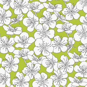 white-flower-natural-muster-hell-kiwi-bg_big
