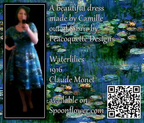 Rrclaude_monet_--_waterlilies__19162-00123_comment_216562_preview