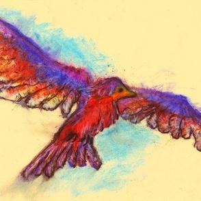 Soaring Bird1