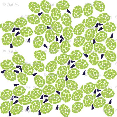 Turtle shells white