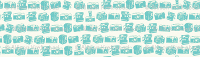 Teal/Cream Camera Collection