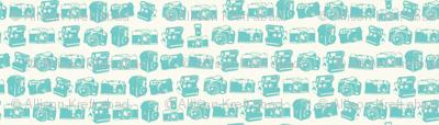 Teal/Cream Camera Collection