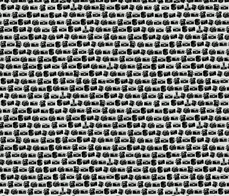 Black/Grey Camera Collection fabric by allisonkreftdesigns on Spoonflower - custom fabric