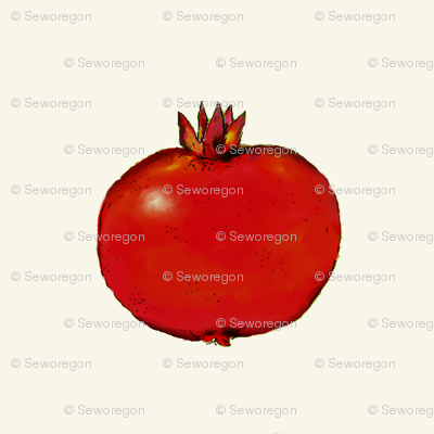Pomegranate On White