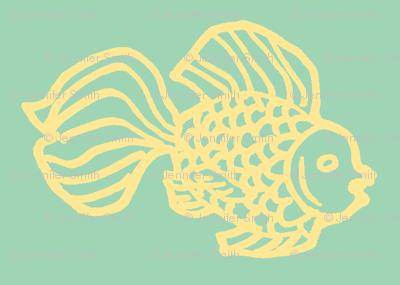 Fish aqua