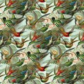 Rrrrrhummingbirdpattern_shop_thumb