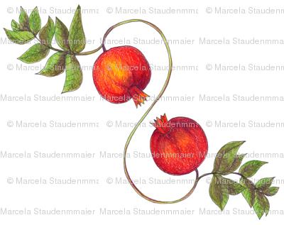 Pomegranates_classic