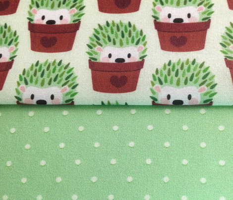 Smaller Hedgehogs disguised as cactuses