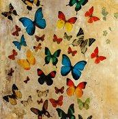 Rsummerbutterflies_shop_thumb