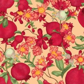 Pomegranate Creamsicle