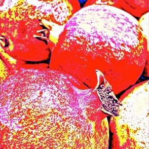 Anardana, The Prospering Pomegranate