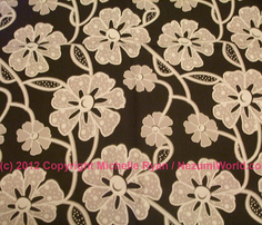 Rrrr50s_fabrics_lace_white_copy2_comment_233349_thumb