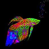 Rrrrrrfish_tail_nautilus_dance_with_eye_2_ed_ed_shop_thumb