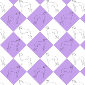 Whippet diamonds - purple