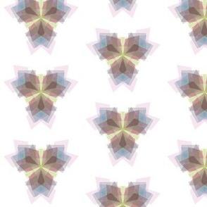 bloomy geometry